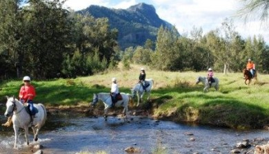 Horse riding for all ages and levels of ability