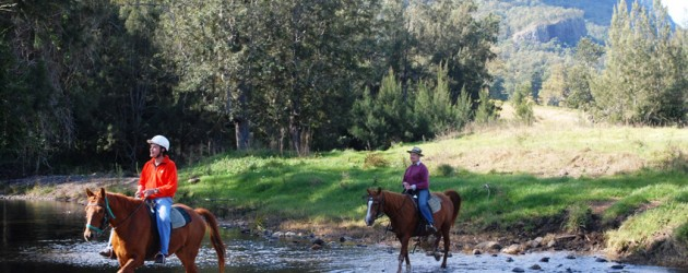 HORSE RIDING FOR ALL AGES & ABILITIES