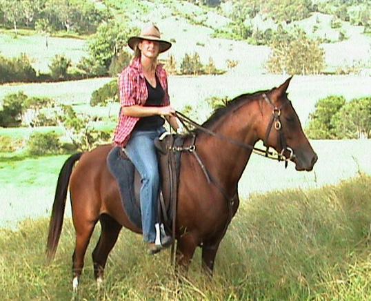 Cedar Glen Arabians