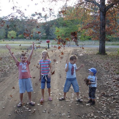 Farm Activities at Cedar Glen