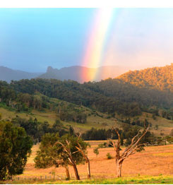 Gold at the end of the rainbow at Cedar Glen