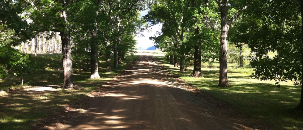 Welcome to an authentic farmstay experience