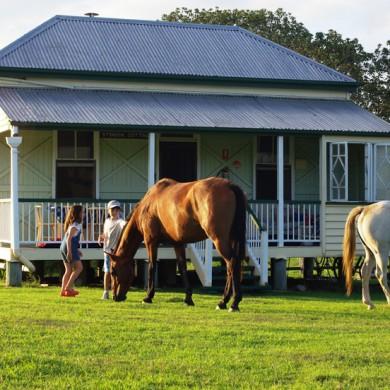 Cedar Glen Farmstay - Stinson Cottag