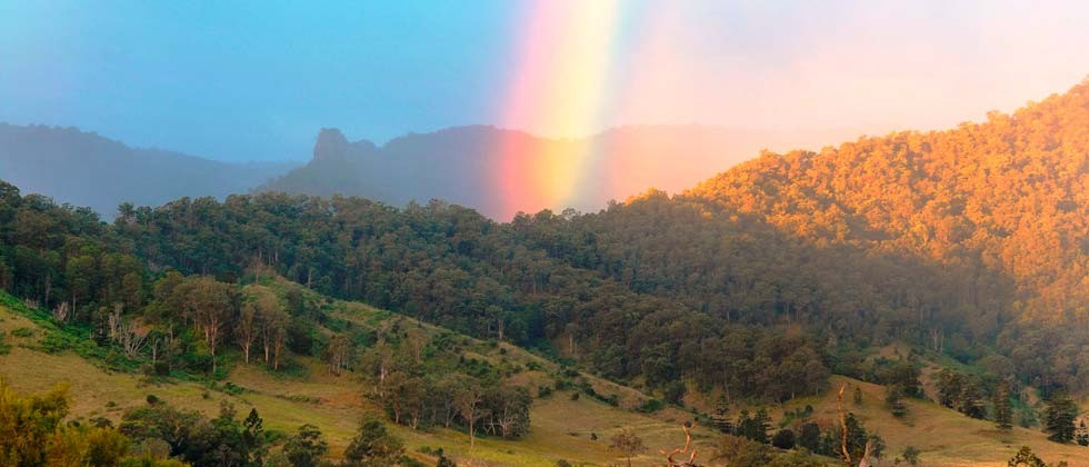 Cedar Glen Farmstay - Queensland